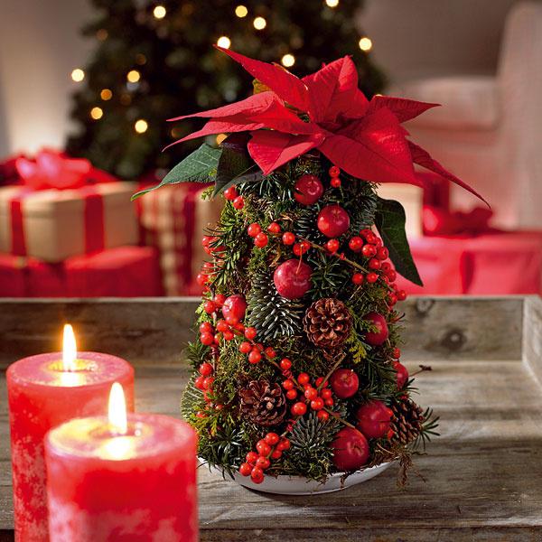 Naozaj hviezdne Vianoce