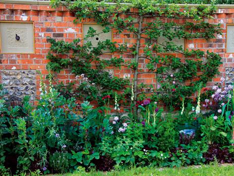 Ukážková záhrada bez chémie