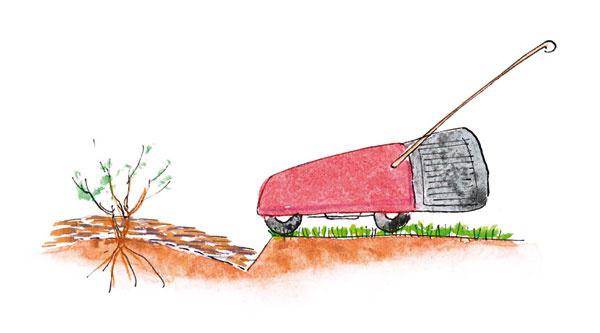 Pomôckou pri kosení okraja trávnika okolo výsadieb môže byť aj okrajová brázda po ich obvode, ku ktorej sa dostanete kosačkou kolmo. Tento spôsob je najmenej nápadný, a preto vhodný aj na prírodné úpravy, kde by linka z obrubníkov pôsobila príliš výrazne a tvrdo.