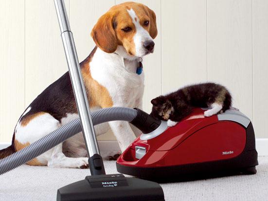 Domácí pomocníci pre vašu domácnosť