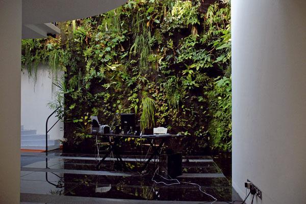 koncept zvislých záhrad: Patrick Blanc
