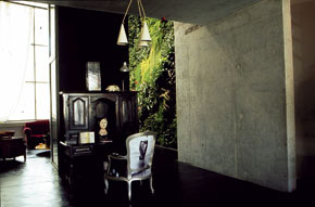 Zelené steny Patricka Blanca sa udomácňujú aj v interiérech tak, jako je to v prípade parížskeho loftu. Skladba rastlín sa musí prispôsobiť intenzite presvetlenia.