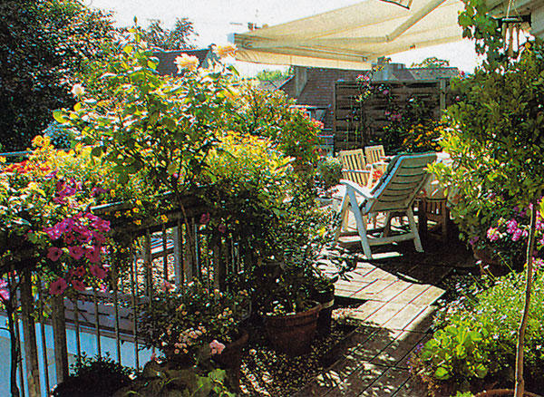 Ak si potrebujete kompenzovať nedostatok zelene vo vašom okolí, vytvorte si na terase zelený prales.