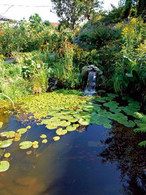 Najefektnejšou časťou životodarného pohybu vody v jazernom ekosystéme je neveľký vodopád.