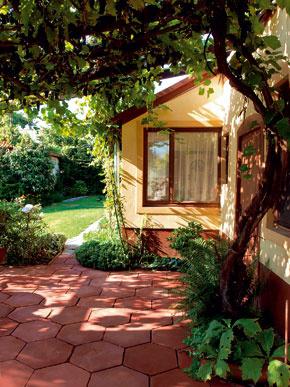 Prízemný dom bez jasného štýlu pomaly prikrývajú kvety a vinič.