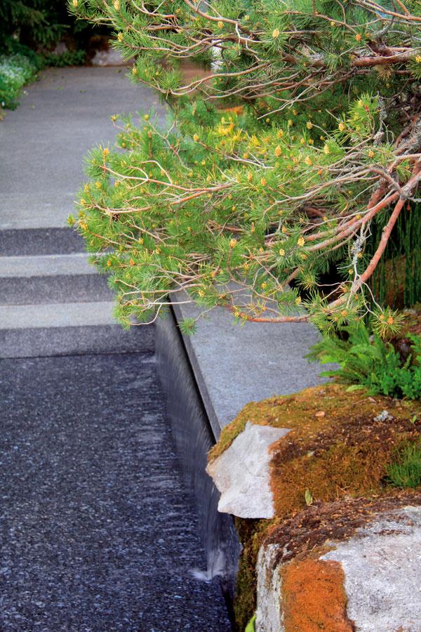Pod svahom sneprehliadnuteľným exemplárom borovice prepadáva voda zjazierka cez hladké žulové bloky asrafinovaným efektom zalieva polovicu kamenného chodníka.