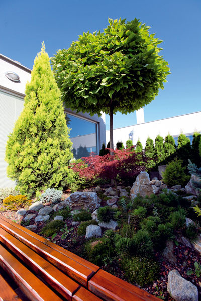 Intenzívna strešná záhrada (foto: Strešné substráty)