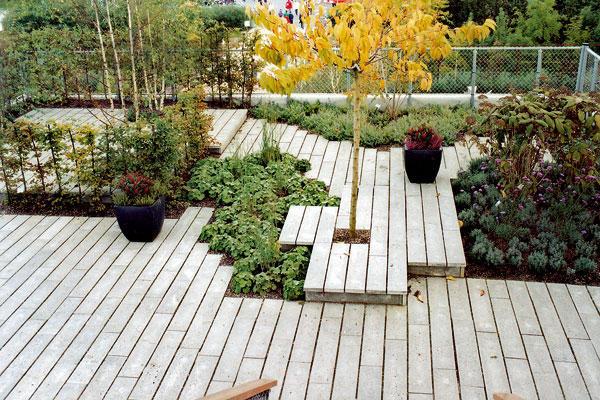 Vytvorme si záhradu na streche