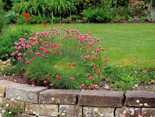 Svahovitá záhrada nie je strašiak