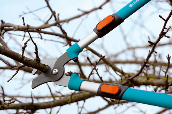 Teleskopické nožnice Gardena 8772 650 T ideálne na strihanie čerstvého dreva. Nová strihacia geometria zabezpečuje optimálny prenos sily (o30 % menej vynaloženej sily). Strihaný konár nekĺže.