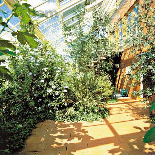 Zimná záhrada