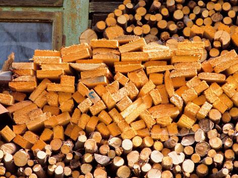 Obnoviteľné zdroje energie – biomasa