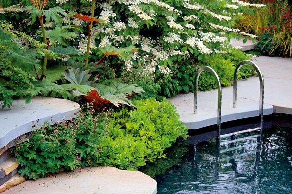 Ak chcete vysadiť aj najbližšie okolie bazéna, rozhodne sem vyberte nenáročné rastlinné druhy, ktoré veľmi neopadávajú – dobrým adeptom je napríklad plazivá pachysandra.