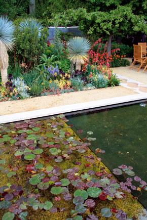 Trendové sú bazény, vktorých sa spája okrasná arelaxačná funkcia. Výsadba vich okolí môže voňať exotikou, prípadne sem môžete na leto umiestniť aj väčšie izbové rastliny.