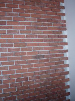 Časť obloženej steny pred dokončením odtieň Olm