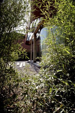 Bambusový plot narástol, aby plnil rovnakú úlohu ako oceľový pás: chráni pred cudzími pohľadmi.