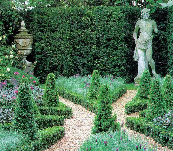 Zahrada so zivym plotom a upravenymi krikmi