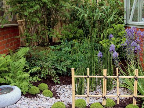 Tipy na JÚN pre záhradkárov