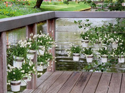 Útulná záhrada v holandskom mestečku Lisse