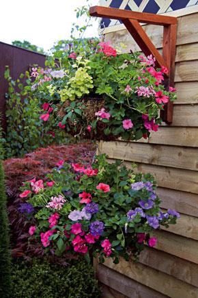 Vďaka precízne vybraným vegetačným nádobám arastlinám sa váš balkón ľahko premení na miesto ako zo starých čias. Vyberte si klasické hlinené alebo kovové črepníky, prípadne drôtené nádoby. Vysaďte do nich vždy len jeden rastlinný druh (nemusia to byť iba letničky). Ztrvaliek sú vhodné zvončeky (na obrázku), kocúrnik, levanduľa, orlíčky, hortenzie, astilby, pakosty aďalšie; zletničiek zasa muškáty, fuksie či petúnie.