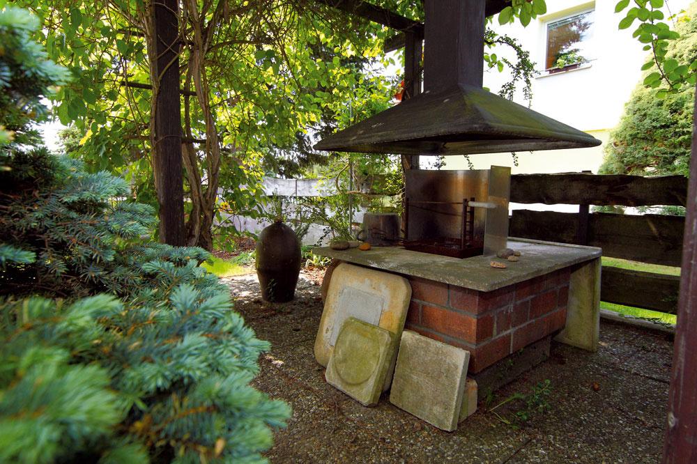 Kivi na pergole Za bazénom, medzi starým anovým domom, stojí drevená pergola sotvoreným kozubom. Tieň tu vytvára bohato rozvetvená aktinídia čínska, drobnoplodé samoopeľovacie jedlé kivi, ktoré sa po drevenej konštrukcii pnie už asi 15 rokov (jeho silný drevnatý kmeň vidieť pri opornom stĺpiku). Hoci sa väčšinou odporúča výsadba oboch pohlaví, aj ako samoopeľovacie plodí dobre – úroda ztejto jedinej rastliny je asi jedno desaťlitrové vedro za sezónu. Plody dozrievajú na jeseň aje ich stále dosť, aj keď majiteľ nerobí nijaký špeciálny rez (aktinídia plodí na dvojročnom dreve). Necháva rastlinu voľne pokrývať pergolu, iba zčasu na čas zreže šľahúne, ktoré prekážajú.