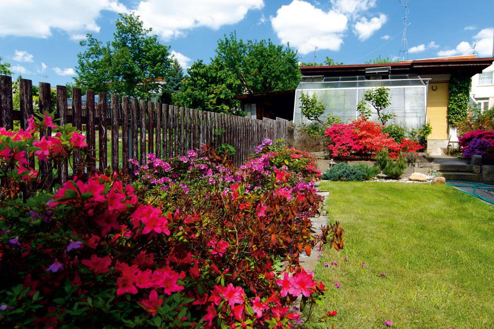 Úžitková záhradka Za domom, vseverozápadnej časti parcely, je úžitková záhrada (pestujú tu najmä bobuľové ovocie ajahody). Lemuje ju nepravidelná výsadba okrasných kríkov, takže si ju na prvý pohľad ani nevšimnete. Celkom vzadu vkúte stojí domček na záhradné náradie, na ktorého južnú stenu nadväzuje nenápadný skleník. (Pohľad od domu ku skleníku – vľavo, aopačne, od skleníka kpergole skozubom – vpravo.)