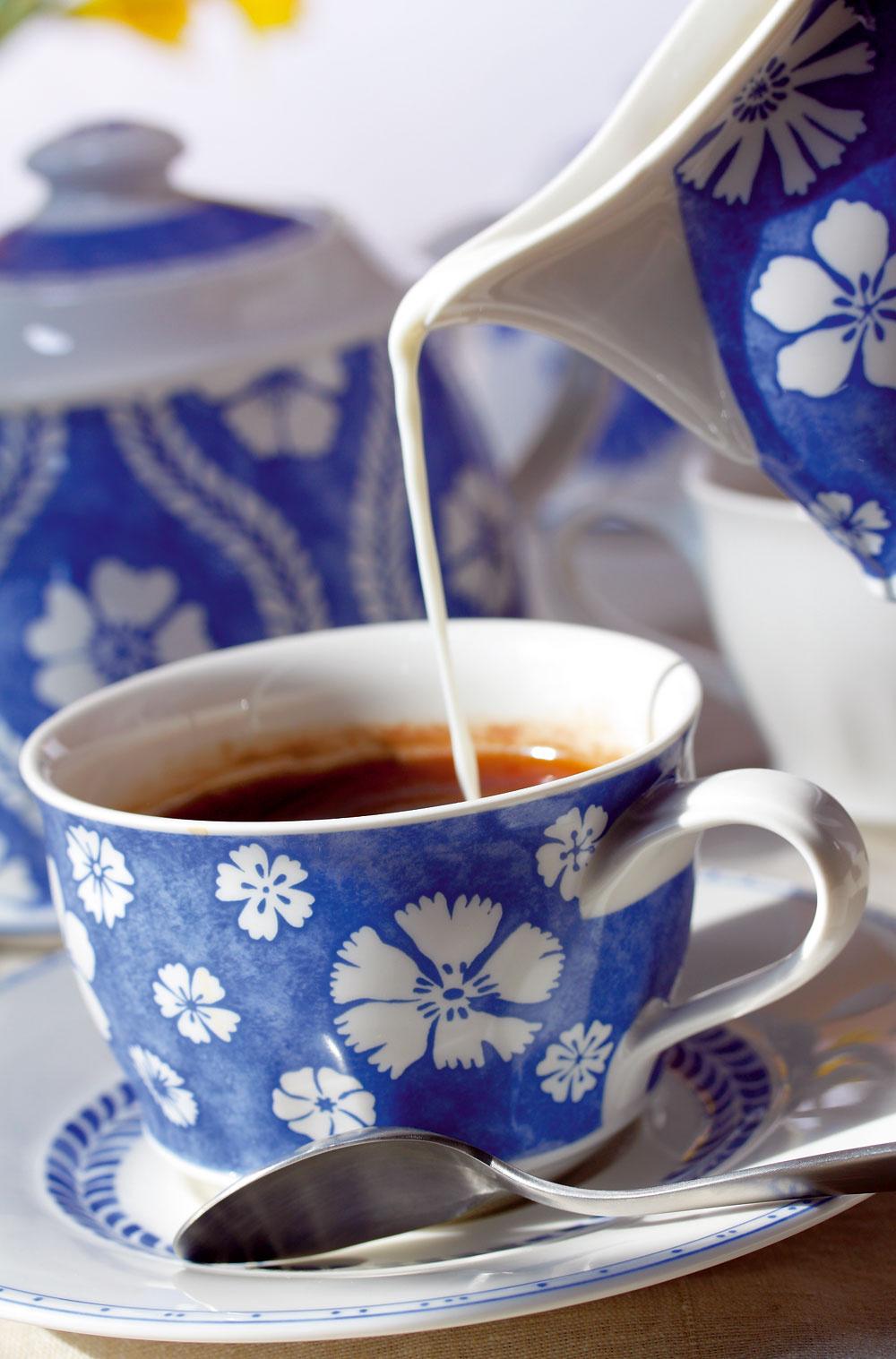 Šálka stanierikom, cena 18 €. Kanvička na mlieko, cena 27,70€. Čajník, cena 73,20 €, všetko zkolekcie Farmhouse Touch blue. Predáva Villeroy & Boch, Atrium.