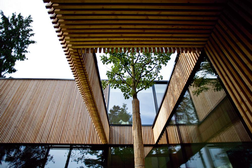 j keď tu stromy vlete príjemne tienia, ochrana pred slnkom bola dôležitým aspektom pri navrhovaní tvaru domu – západne orientované zasklenia chráni okrem čínskej hrušky aj presah strechy nad prízemím, vlete ich na zvyšku fasády doplní solárna plachta.