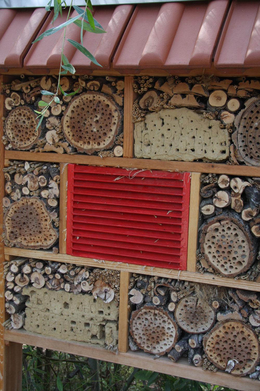Vboji proti škodcom vám môžu byť nápomocné živočíchy, prirodzení predátori – žaby, jašterice, vtáky, netopiere adravý hmyz. Aby ste ich prilákali, budete im musieť vytvoriť hmyzie domčeky ahotely, kúty skopami suchého lístia akonárov, vtáčie búdky, naskladané drevené polená apodobne.