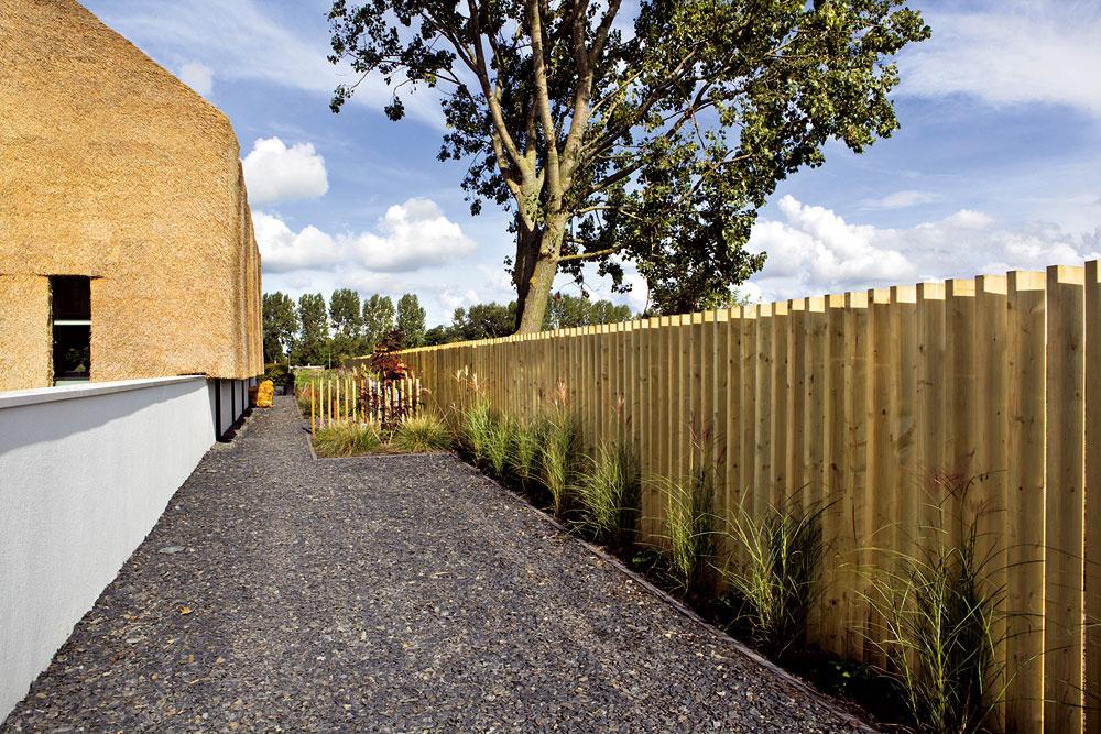 Zeleň okolo domu je vysadená v úzkych pásoch popri plotoch. Nájdeme medzi ňou aj trstinu, ktorá rastie aj na brehoch kanála vedľa domu.