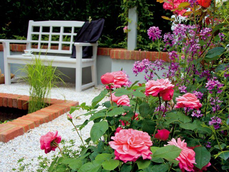 Ako si založiť aromatickú záhradu