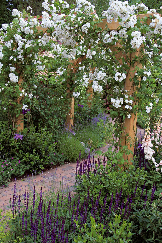 Cestičky, ktoré nevedú priamo, ale sa oblúkovito zatáčajú, vzbudzujú zvedavosť, navodzujú pocity tajomna. Veľmi pôsobivá je pergola obrastená kvitnúcimi rastlinami, napríklad vistériou, ružami či popínavou hortenziou.