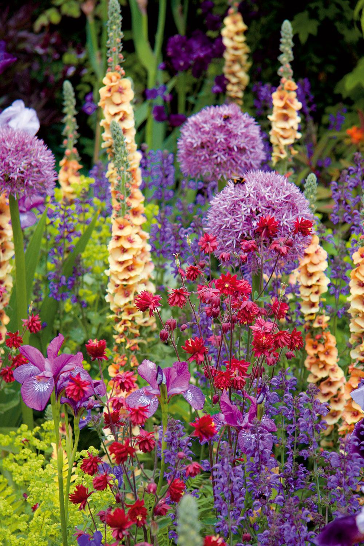 Na záhonoch na vidieku by rozhodne nemali chýbať kvety – letničky, trvalky či cibuľoviny. Netreba ich obmedzovať vraste ani zabraňovať samovoľnému rozširovaniu, skôr naopak, môžete ich nechať voľne bujnieť. Aj vďaka tomu získa vidiecka záhrada svoje typické kúzlo.