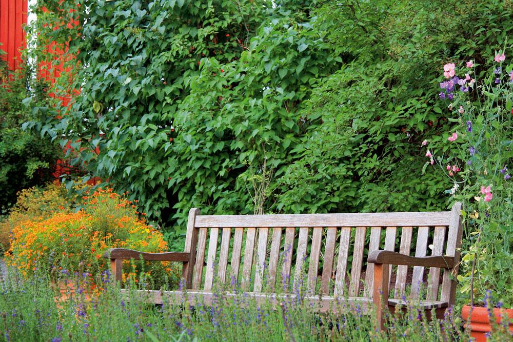 V záhrade na vidieku by rozhodne nemala chýbať drevená lavica. V minulosti ste ju mohli nájsť pri každom dedinskom dome.