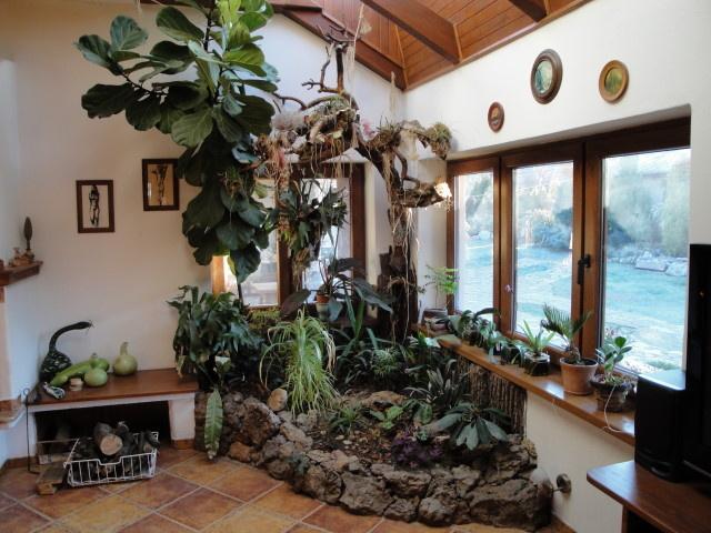 Zimná záhrada v priestoroch domu