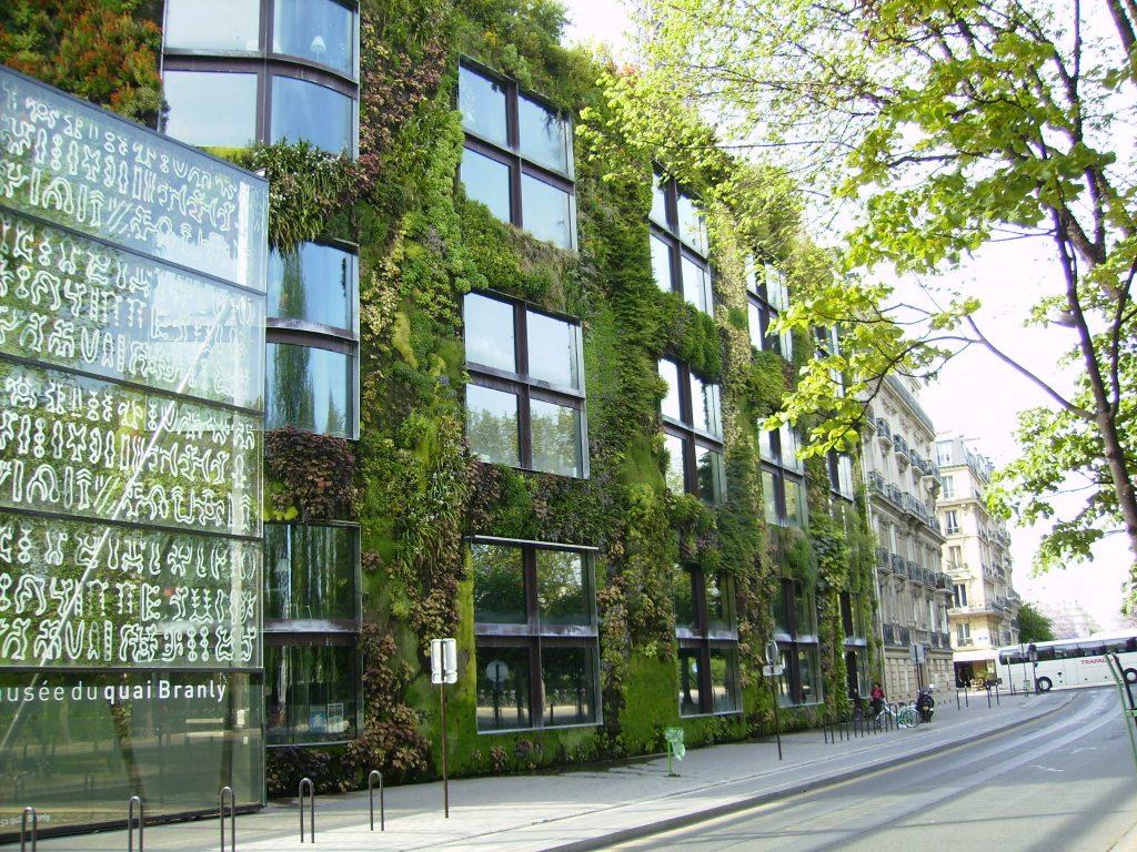 Pôsobivé vertikálne záhrady priamo na stenách budov