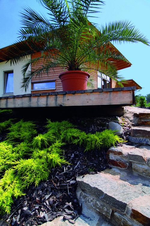 Na podstavci stál, pobrežný okál pripomínal. Exotické bývanie lemované palmami, kde sa plážou stáva lúka a miesto mora preberá jazero. Aj takto si ľudia môžu splniť sen prímorského života. (foto: Dano Veselský)