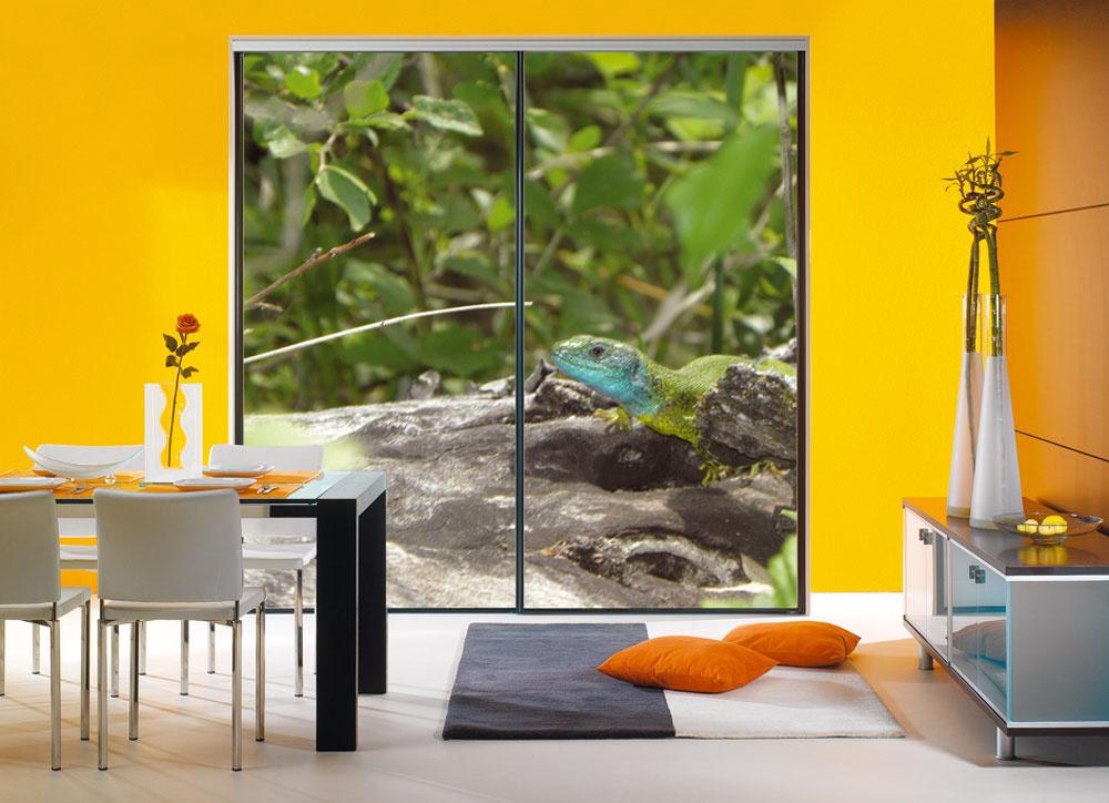 Hitom sú realistické fototapety s prírodnými motívmi na dverách šatníkov, ktoré vnesú do interiéru originálny akcent. (foto: Indeco)