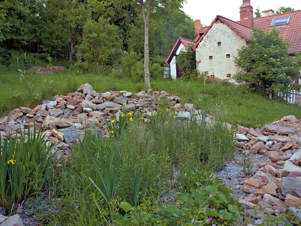 Biologické čistenie vody (2. časť)