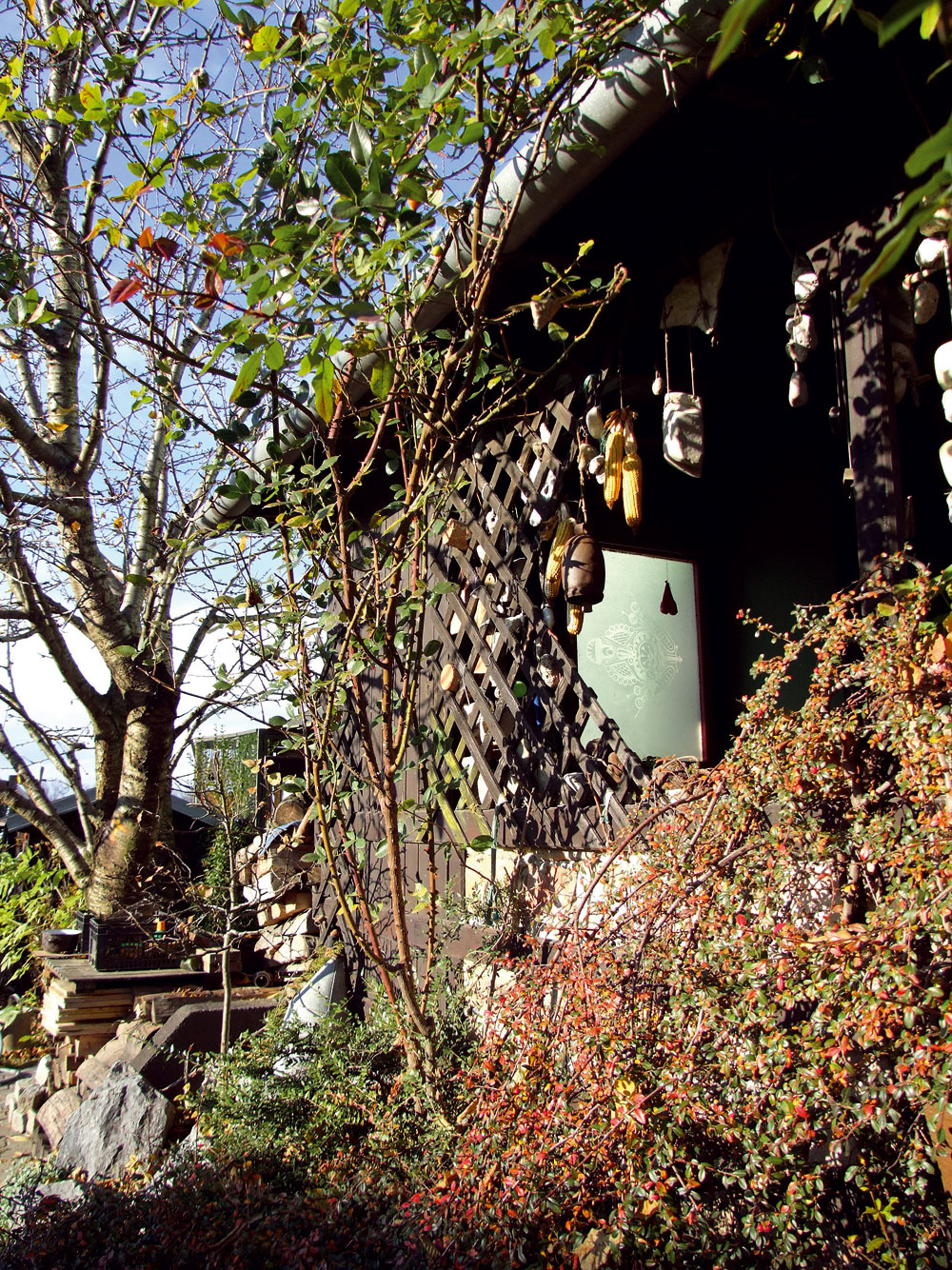 Vkroví pod čerešňou si ustlala veranda vymurovaná zciachovaných tehál. Spletaná skríkmi šikmým latovaním vstupuje do starých príbehov odomoch, ktoré vyrástli zo záhrad.