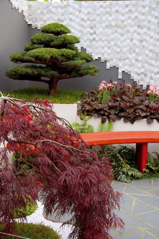 Japonský nádych prepožičiavajú výsadbe najmä pôsobivé bonsaje zborovíc ačervenolistý japonský javor.