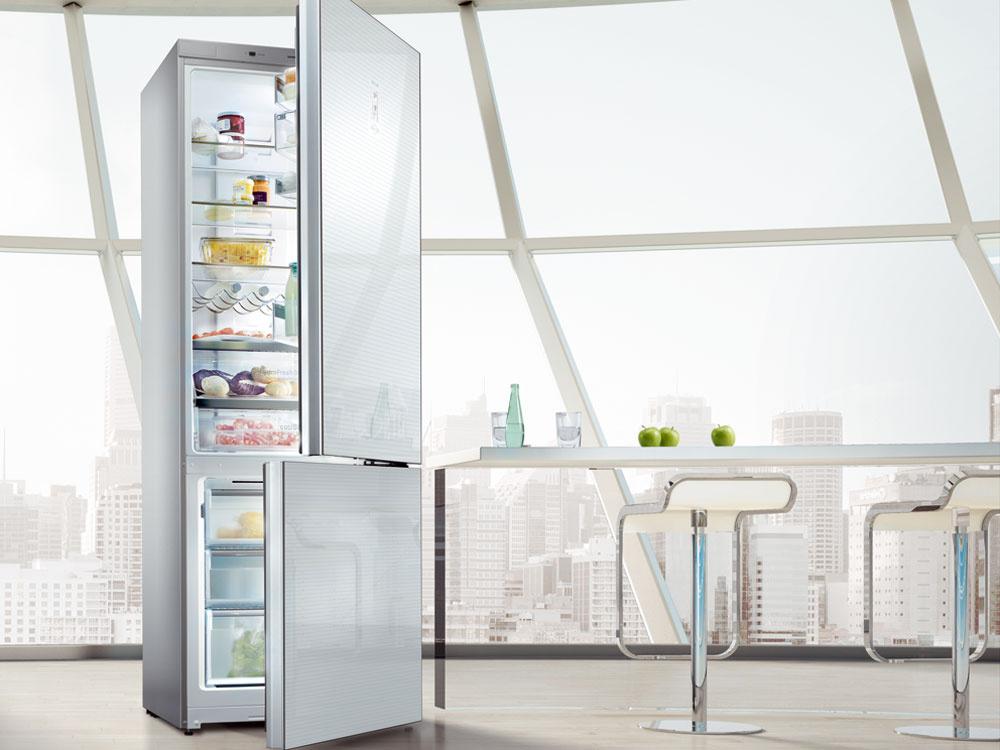 Kombinovaná chladnička Siemens KG 39EAL40. Energetická trieda A+++. Spotreba energie 157 kWh/rok (0,43 kWh/deň). Objem 339 litrov (247/92). Hlučnosť 38 dB. Elektronická regulácia teploty – LED ukazovatele, optický aakustický varovný signál, funkcia prázdninový režim, dynamické chladenie, automatické odmrazovanie, funkcia superchladenia sautomatickou deaktiváciou, flexShelf – flexibilná priehradka, HydroFreshBox sreguláciou vlhkosti, coolBox, LED osvetlenie vnútorného priestoru. Mraznička: BigBox, systém lowFrost, funkcia supermrazenie,  mraziaca kapacita 14 kg/24 hod, dĺžka skladovania pri poruche 35 hodín. Výška 201 cm. Cena 859,00 €.