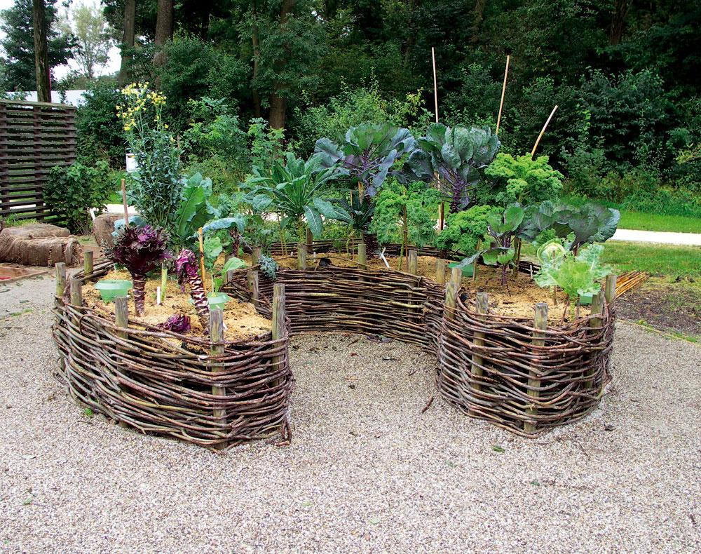 Kobľúbeným prvkom prírodných záhrad patrí aj úžitkový záhon, ideálne zvýšený, vybudovaný zmiestneho materiálu astvarom kľúčovej dierky. Výsadba by mala byť pestrá azáhon by mal pozostávať zviacerých vrstiev: naspodok patrí hrubší rastlinný materiál, ktorý tlením zahrieva pôdu, nasleduje záhradný kompost anavrch, samozrejme mulč, aby pôda príliš rýchlo nevysychala. Tvar kľúčovej dierky je ideálny pre obsluhu záhona aj pre využitie priestoru. Takže priam koncentrovaná skúsenosť avtomto prípade aj pekná na pohľad.