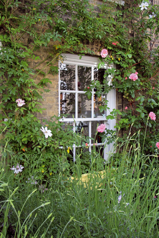 Slnečnú stranu vidieckeho domu alebo plota okolo neho môžete nechať obrásť niektorou zvoňavých popínavých ruží. Romantickú atmosféru zvýraznia plamienky, ktoré sa kružiam výborne hodia avlete spolu snimi nádherne kvitnú.