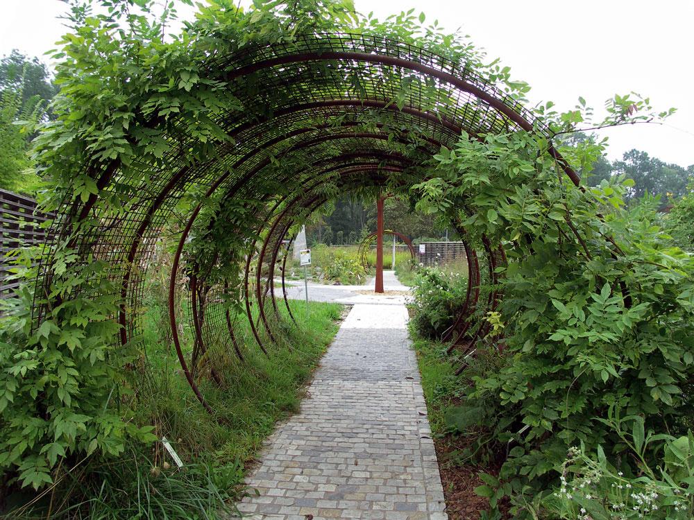 Tunel ako trochu tajomný priechod aopora pre galériu popínavých rastlín.