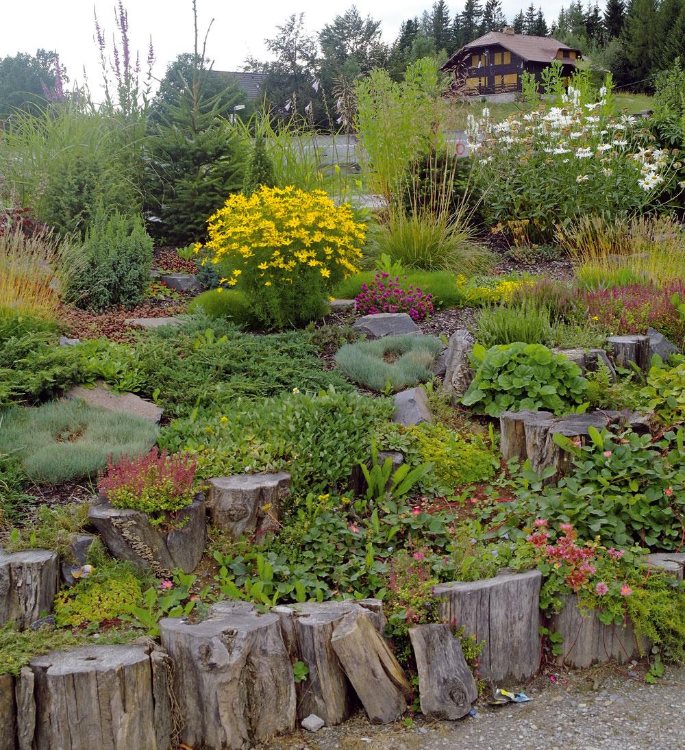 """Ak chcete záhrade pomôcť, inšpirujte sa prírodou azhustite ju na malú plochu. Skalka je výbornou možnosťou, ako na svahu vytvoriť príhodnú záhradku, aako vidno, dokonca nemusí byť ani veľmi skalnatá. Pre túto sympatickú skalku by sa možno hodilo meno """"Skalka Apolienka""""."""