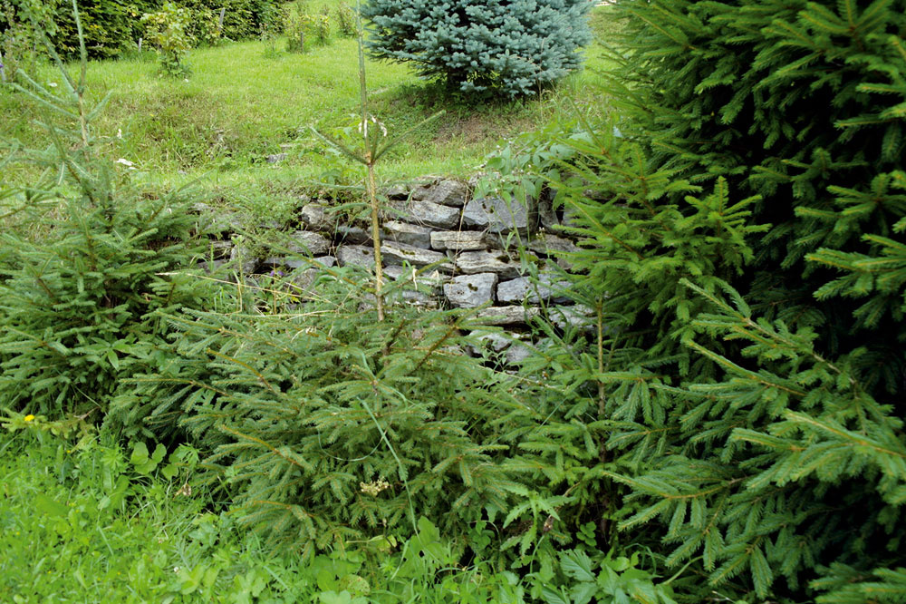 Suché múriky pristanú asi každej svahovitej záhrade – sú výborným spôsobom, ako modelovať terén adobre si rozumejú so zeleňou. Iste, je to prácička pre milovníkov skladačiek amá svoje výškové obmedzenia, ale úspech výsledku je takmer zaručený. Dôležité je pritom vyberať kamene zokolia, pokiaľ možno ploché, tak aby vytvorili štruktúru navzájom previazaných pásov.
