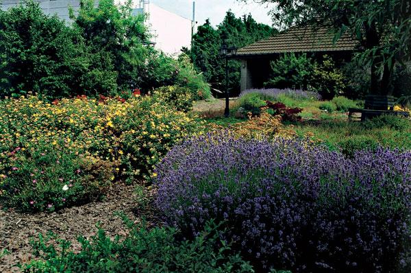 Nielen záhrada potrebuje chodníky