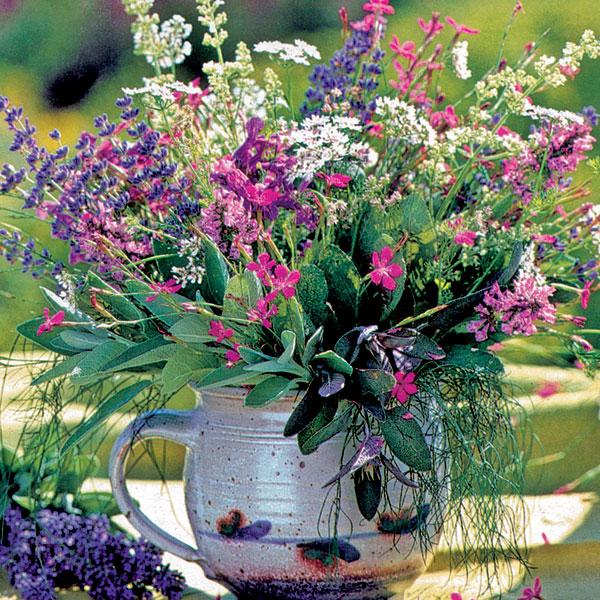September v záhrade