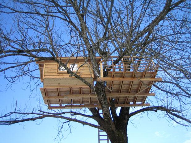 Úžasné bývanie v korunách stromov